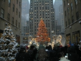 rockefeller-center-tree.jpg